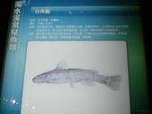 南投-台灣水資源館:2010台灣水資源館9.JPG