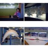 金門-雙鯉湖濕地自然中心:相簿封面
