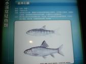 南投-台灣水資源館:2010台灣水資源館11.JPG