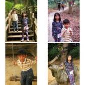 台南-新化植物園:相簿封面