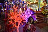 宇玟2014:20141129台南-南鯤鯓羅天大醮燈會186.JPG