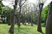 台南-巴克禮紀念公園:20140411巴克禮紀念公園30.JPG