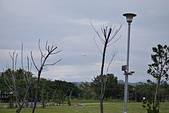 台東-海濱公園:20150107台東-濱海公園33.JPG