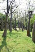 台南-巴克禮紀念公園:20140411巴克禮紀念公園31.JPG