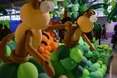 台南2015花現新春:20150221花現新春-泰迪熊逛花園暨氣球嘉年華108.JPG