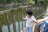 20100502新竹九芎湖賞桐花:P1090461.jpg