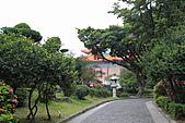 20113月中正紀念堂櫻花試拍:IMG_2118.JPG