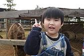 20100101后里天馬牧場、中社花市、泰安車站:P1070384.jpg