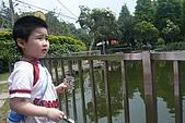 20100502新竹九芎湖賞桐花:P1090466.jpg