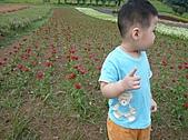 20100822大溪花海農場:P1100082.jpg