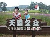 20100822大溪花海農場:P1100091.jpg