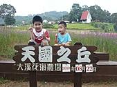 20100822大溪花海農場:P1100093.jpg