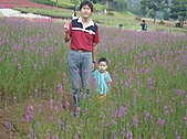 20100822大溪花海農場:P1100097.jpg