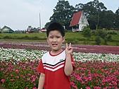 20100822大溪花海農場:P1100101.jpg