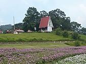 20100822大溪花海農場:P1100104.jpg