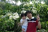 20100502新竹九芎湖賞桐花:P1090499.jpg