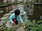 大東濕地生態教育園區:大東生態濕地園區(中正公園) 072.j