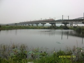 大樹舊鐵橋濕地:舊鐵橋濕地2012.3.11 129.jpg