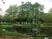 大東濕地生態教育園區:大東生態濕地園區(中正公園) 085.j