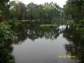 大東濕地生態教育園區:大東生態濕地園區(中正公園) 076.j