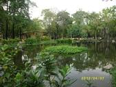 大東濕地生態教育園區:大東生態濕地園區(中正公園) 012.j