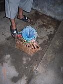 宜蘭九寮溪生態解說2008.11.01:魚簍