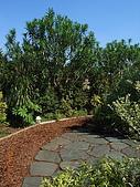 宮崎駿三鷹之森美術館:小花園