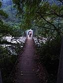 雪見與大安溪峽谷2008.08.21~22:象鼻吊橋