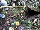 宜蘭九寮溪生態解說2008.11.01:抓老鼠的陷阱示範