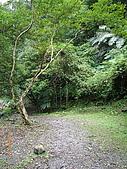 宜蘭九寮溪生態解說2008.11.01:適合全家來這裡走走