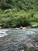 宜蘭九寮溪生態解說2008.11.01:過第一個溪流
