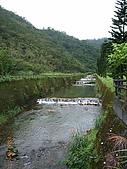宜蘭九寮溪生態解說2008.11.01:崙埤村小溪流