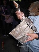 宜蘭九寮溪生態解說2008.11.01:占卜用的尾巴