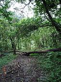 宜蘭九寮溪生態解說2008.11.01:走到這無法再往前了