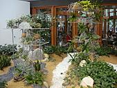 Flora exposition2:DSC03063.JPG