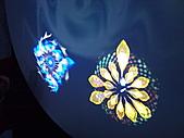 Flora exposition:DSC_1136.jpg