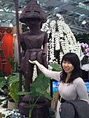 Flora exposition:DSC_0996.jpg