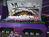 Flora exposition:DSC_0971.jpg