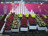 Flora exposition:DSC_0977.jpg