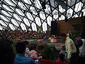 Flora exposition:DSC_1081.jpg