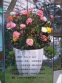 Flora exposition:DSC_0923.jpg