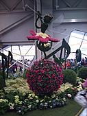 Flora exposition:DSC_0987.jpg