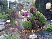 Flora exposition:DSC_1076.jpg