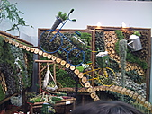 Flora exposition:DSC_1001.jpg