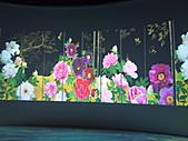 Flora exposition:DSC_0936.jpg