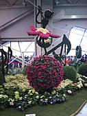 Flora exposition:DSC_0986.jpg