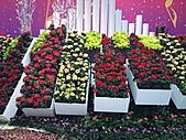 Flora exposition:DSC_0976.jpg