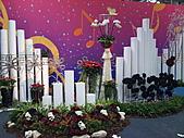 Flora exposition:DSC_0978.jpg