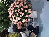 Flora exposition:DSC_0991.jpg