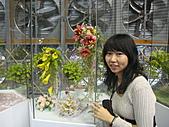 Flora exposition2:DSC03070.JPG